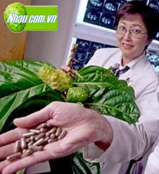 Noni Overview Information