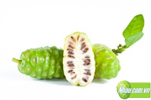 http://nhau.com.vn/uploads/useruploads/nhau_com_vn/noni_fruit_11-Things-to-Know-About-Noni-Juice-And-Its-Benefits-For-Your-Health.jpg