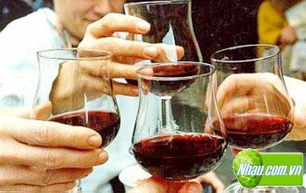 Nước cốt nhàu (Noni Juice) quà tặng sức khỏe ý nghĩa tết 2014